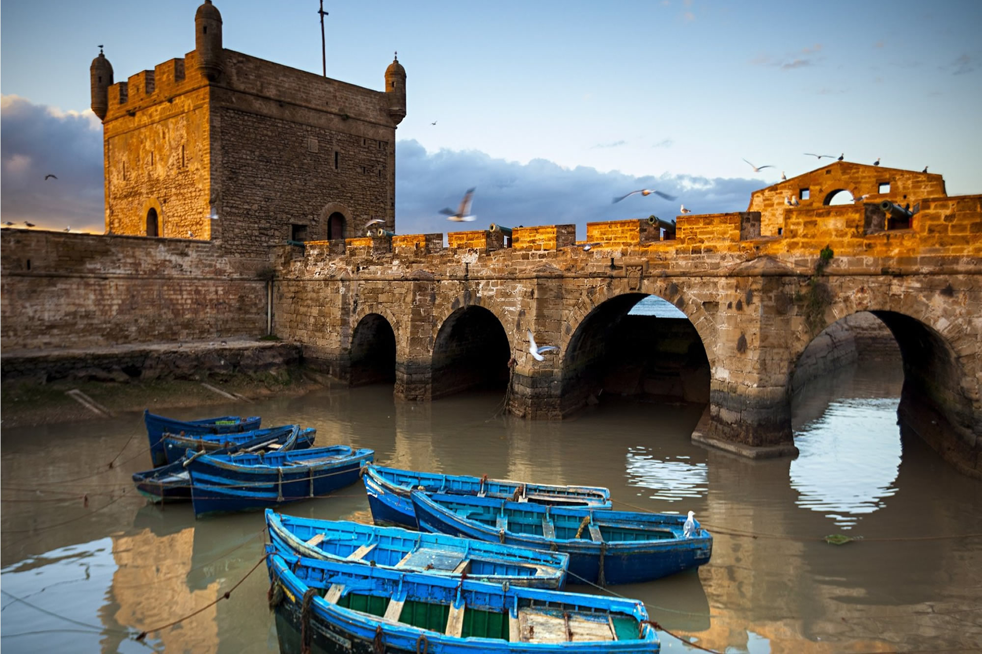day trips from Marrakech to Essaouira