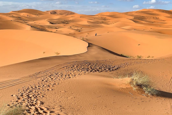 Shared Marrakech to Fez via Merzouga Sahara Desert 3-Day Trip